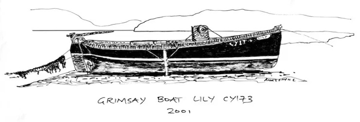 Drawing of Grimsay Boat Lily CY173, 2001.